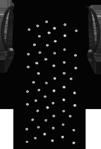 SWPOUCHIP5N6