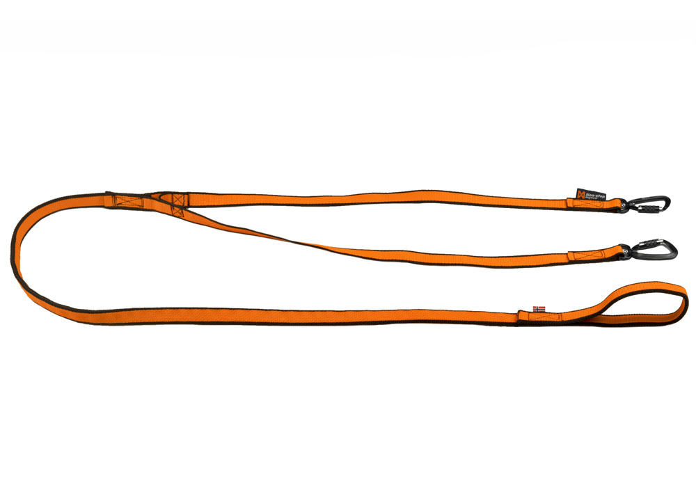 Bungee leash double