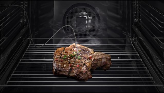 MeatProbe