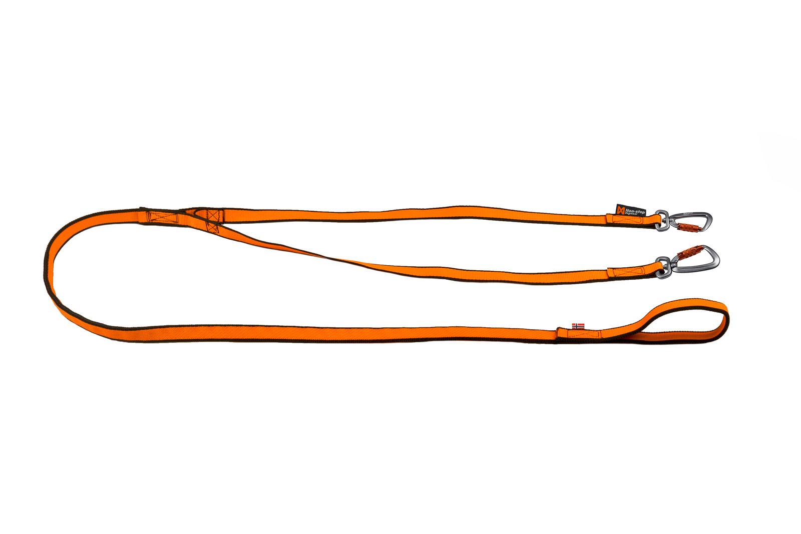 Bungee leash double